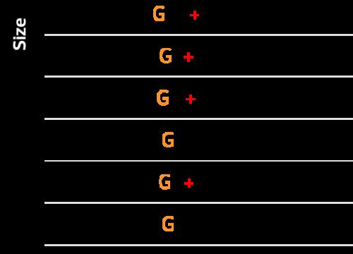 Type – G